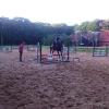 26-mei-2012-paarden-en-renske-308